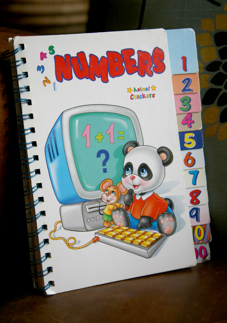 dumb numbers book