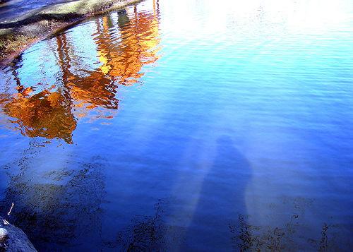 Meer Reflections